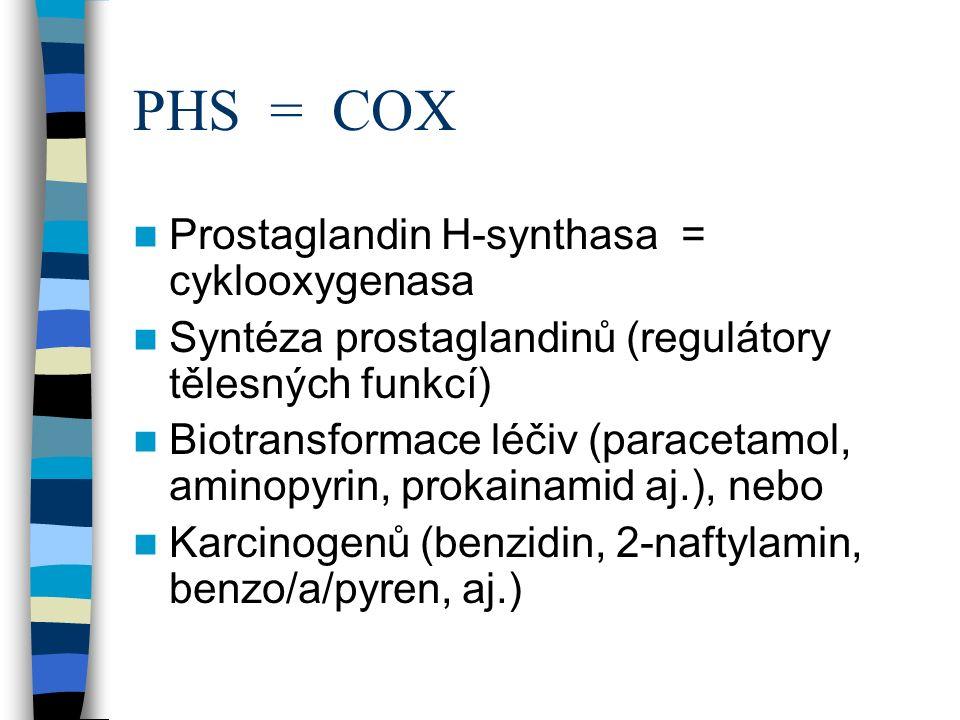 PHS = COX Prostaglandin H-synthasa = cyklooxygenasa Syntéza prostaglandinů (regulátory tělesných funkcí) Biotransformace léčiv (paracetamol, aminopyrin, prokainamid aj.), nebo Karcinogenů (benzidin, 2-naftylamin, benzo/a/pyren, aj.)