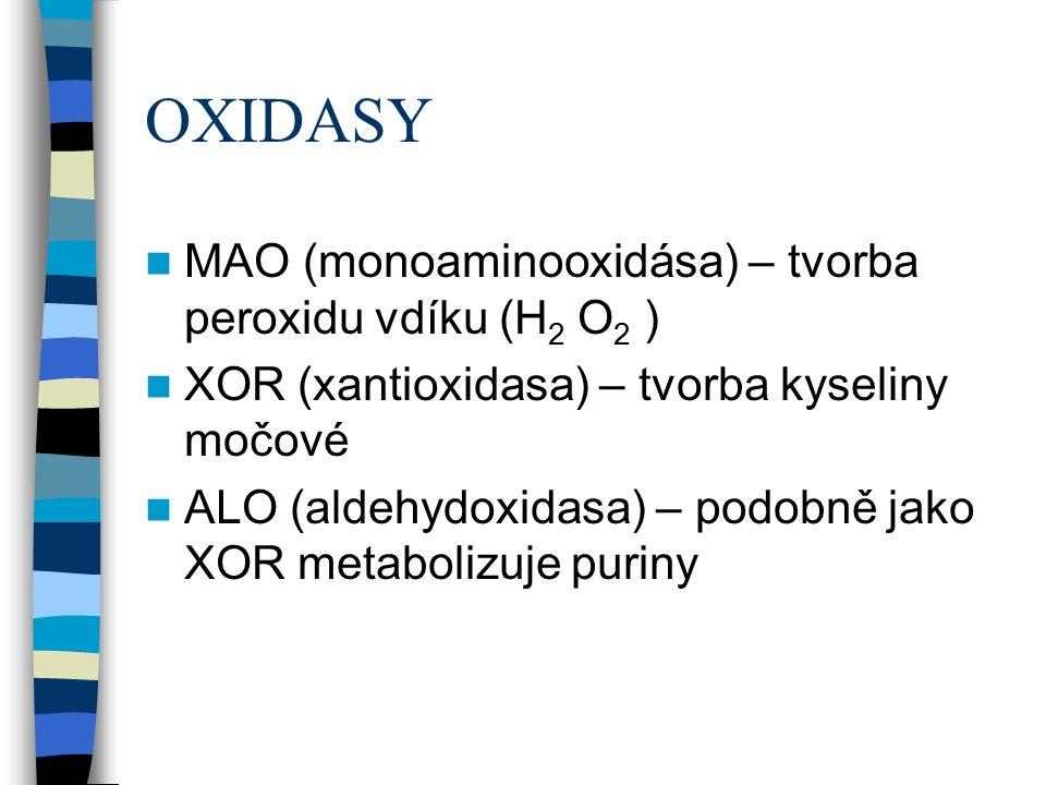 OXIDASY MAO (monoaminooxidása) – tvorba peroxidu vdíku (H 2 O 2 ) XOR (xantioxidasa) – tvorba kyseliny močové ALO (aldehydoxidasa) – podobně jako XOR metabolizuje puriny
