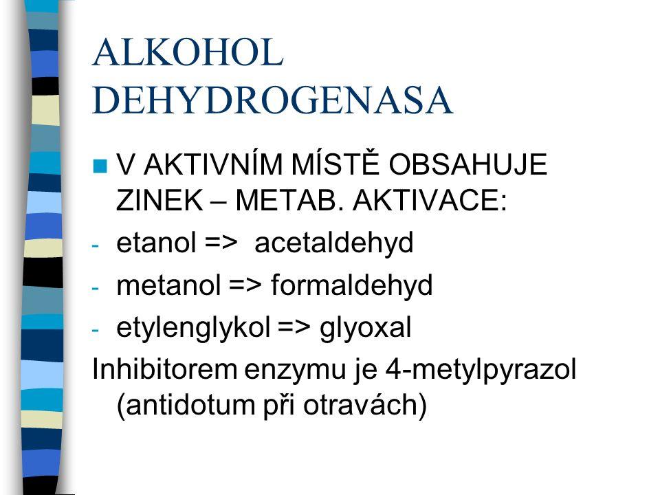 ALKOHOL DEHYDROGENASA V AKTIVNÍM MÍSTĚ OBSAHUJE ZINEK – METAB.