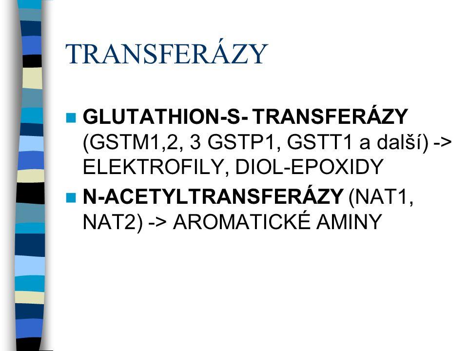 TRANSFERÁZY GLUTATHION-S- TRANSFERÁZY (GSTM1,2, 3 GSTP1, GSTT1 a další) -> ELEKTROFILY, DIOL-EPOXIDY N-ACETYLTRANSFERÁZY (NAT1, NAT2) -> AROMATICKÉ AMINY