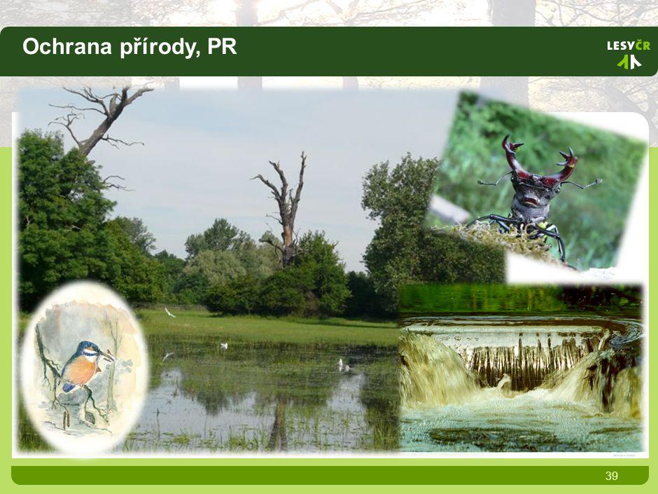 Ochrana přírody, PR 39