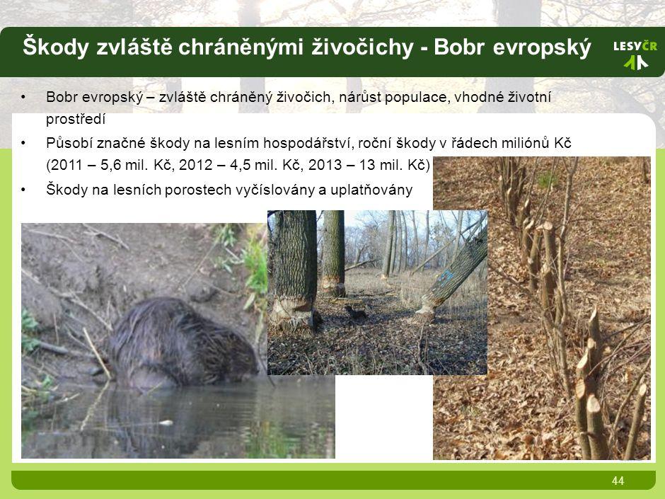 Škody zvláště chráněnými živočichy - Bobr evropský 44 Bobr evropský – zvláště chráněný živočich, nárůst populace, vhodné životní prostředí Působí značné škody na lesním hospodářství, roční škody v řádech miliónů Kč (2011 – 5,6 mil.