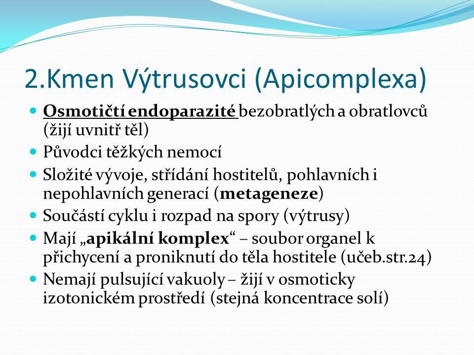 """2.Kmen Výtrusovci (Apicomplexa) Osmotičtí endoparazité bezobratlých a obratlovců (žijí uvnitř těl) Původci těžkých nemocí Složité vývoje, střídání hostitelů, pohlavních i nepohlavních generací (metageneze) Součástí cyklu i rozpad na spory (výtrusy) Mají """"apikální komplex – soubor organel k přichycení a proniknutí do těla hostitele (učeb.str.24) Nemají pulsující vakuoly – žijí v osmoticky izotonickém prostředí (stejná koncentrace solí)"""