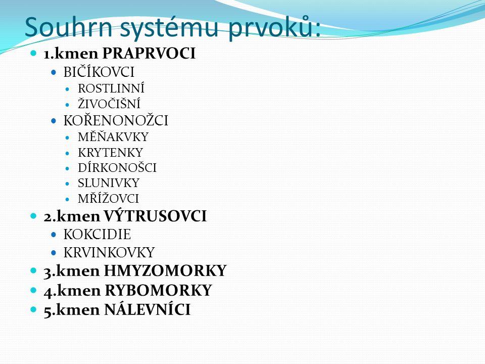Souhrn systému prvoků: 1.kmen PRAPRVOCI BIČÍKOVCI ROSTLINNÍ ŽIVOČIŠNÍ KOŘENONOŽCI MĚŇAKVKY KRYTENKY DÍRKONOŠCI SLUNIVKY MŘÍŽOVCI 2.kmen VÝTRUSOVCI KOKCIDIE KRVINKOVKY 3.kmen HMYZOMORKY 4.kmen RYBOMORKY 5.kmen NÁLEVNÍCI