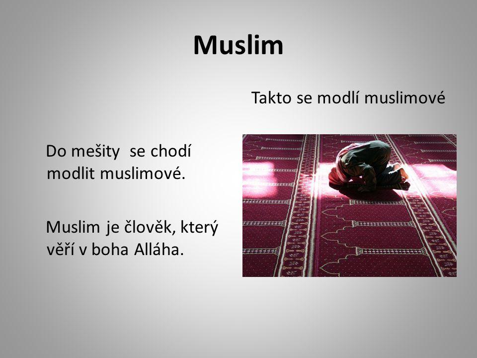 Muslim Do mešity se chodí modlit muslimové. Muslim je člověk, který věří v boha Alláha.