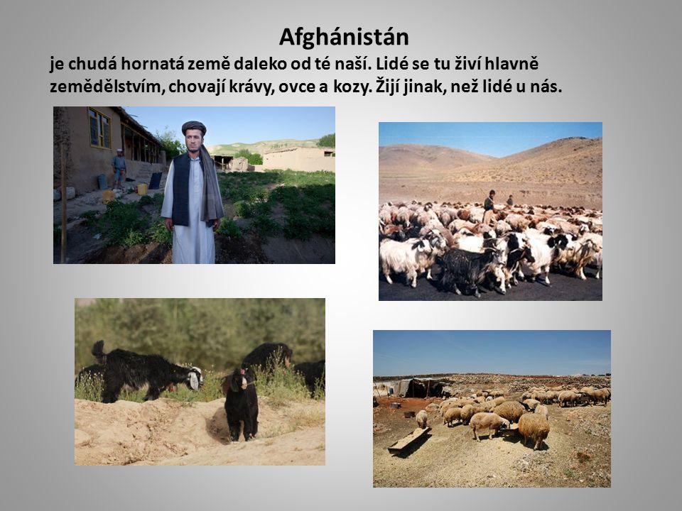 Afghánci mají jednu velkou zálibu a tou je pouštění draků.