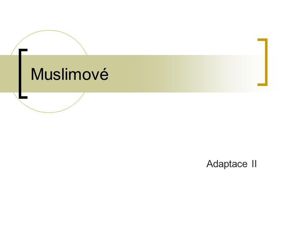 Muslimové Adaptace II
