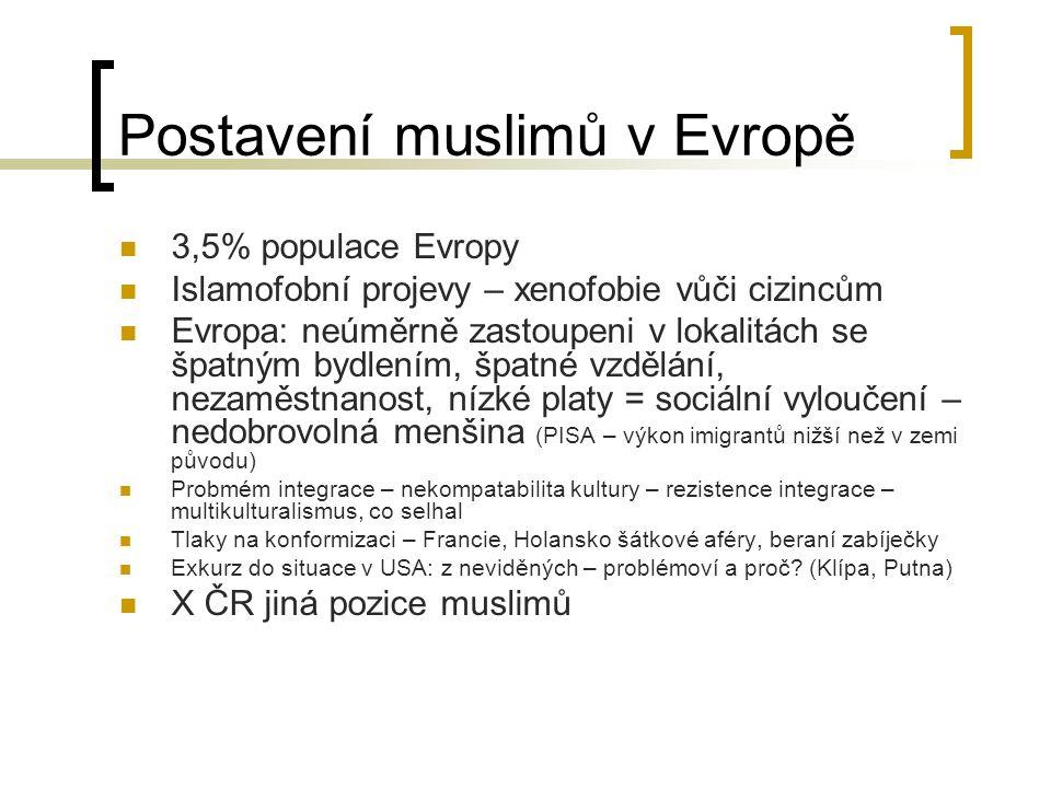 Postavení muslimů v Evropě 3,5% populace Evropy Islamofobní projevy – xenofobie vůči cizincům Evropa: neúměrně zastoupeni v lokalitách se špatným bydlením, špatné vzdělání, nezaměstnanost, nízké platy = sociální vyloučení – nedobrovolná menšina (PISA – výkon imigrantů nižší než v zemi původu) Probmém integrace – nekompatabilita kultury – rezistence integrace – multikulturalismus, co selhal Tlaky na konformizaci – Francie, Holansko šátkové aféry, beraní zabíječky Exkurz do situace v USA: z neviděných – problémoví a proč.