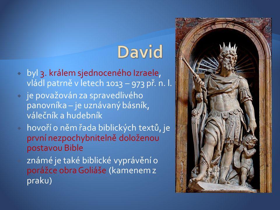  dobyl Jeruzalém a podmanil si mnohá okolní království  vládl dlouhých 40 let  zavedl centralistickou monarchii s úřednickou správou  nechal sčítat lid, aby stanovil daně  byl velmi tolerantní k potomkům předchozího krále Saula  nebyl bezchybný – je známa historka o jeho cizoložství s Bat- šebou, které se snažil skrýt natolik, že se dopustil vraždy jejího muže  z tohoto nemanželského poměru se narodil budoucí proslulý král Šalamoun  vlády ve prospěch Šalamouna se vzdává po vzpouře svého vlastního syna Abšoloma, kterou krvavě potlačil