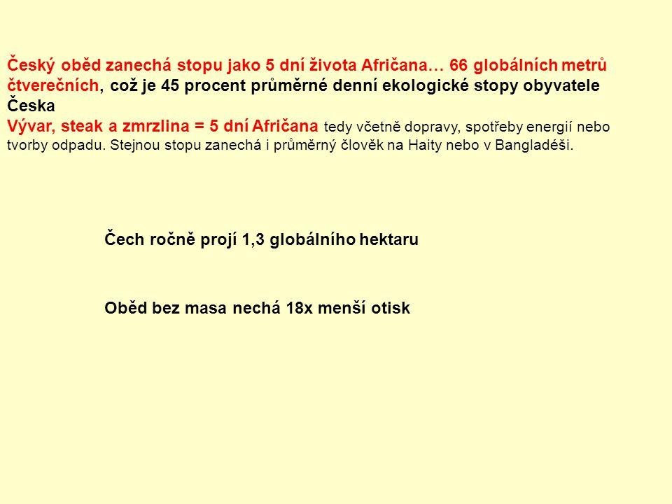 Český oběd zanechá stopu jako 5 dní života Afričana… 66 globálních metrů čtverečních, což je 45 procent průměrné denní ekologické stopy obyvatele Česk