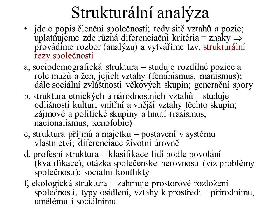Strukturální analýza jde o popis členění společnosti; tedy sítě vztahů a pozic; uplatňujeme zde různá diferenciační kritéria = znaky  provádíme rozbor (analýzu) a vytváříme tzv.