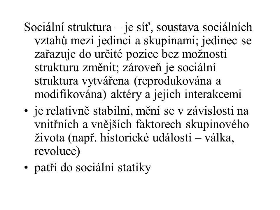 Pohyb mezi sociálními pozicemi  ve společenské struktuře nazýváme sociální mobilitou = změna sociálního statusu a, mobilita horizontální – nemění se postavení na společenském žebříčku  při horizontálním dělení nelze stanovit, která seskupení jsou lepší nebo horší, vyšší nebo nižší (člen svazu zahrádkářů  člen svazu včelařů) b, mobilita vertikální – dochází ke změně na společenském žebříčku  vzestup a pád; při vertikálním dělení vyjadřujeme hierarchii vyšší – nižší, lepší – horší (student VŠ  vrátný)