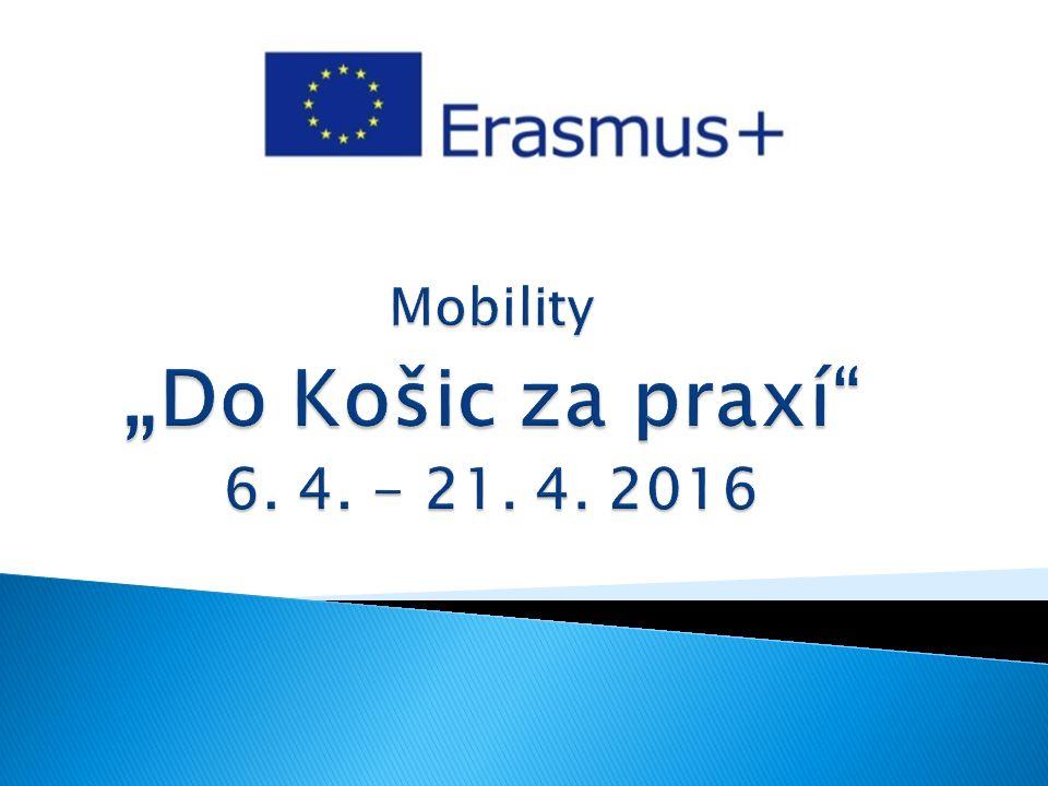  Vzdělávací mobilita jednotlivců podporuje mobility v oblasti vzdělávání, odborné přípravy a mládeže, rozsáhlé akce Evropské dobrovolné služby a sdílené magisterské studium.