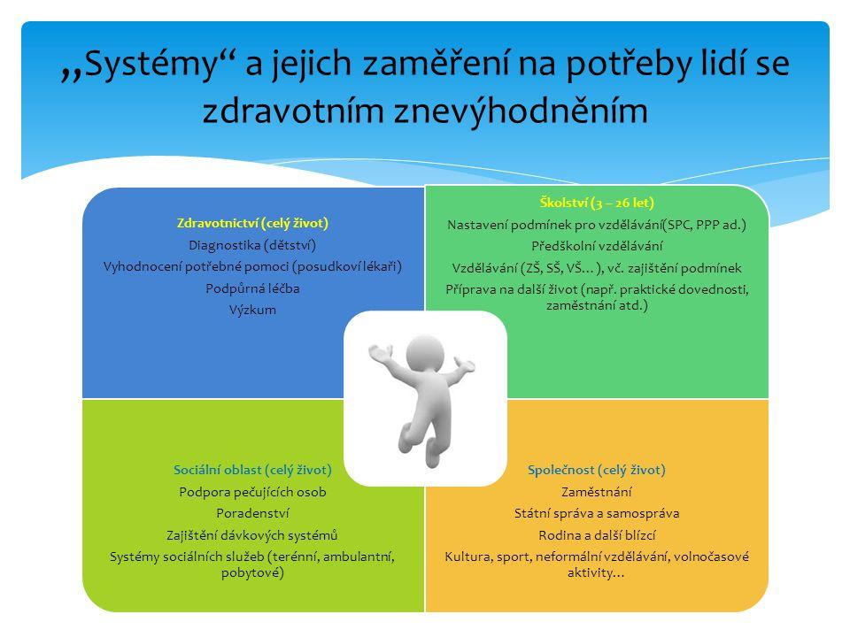 Zdravotnictví (celý život) Diagnostika (dětství) Vyhodnocení potřebné pomoci (posudkoví lékaři) Podpůrná léčba Výzkum Školství (3 – 26 let) Nastavení podmínek pro vzdělávání(SPC, PPP ad.) Předškolní vzdělávání Vzdělávání (ZŠ, SŠ, VŠ…), vč.