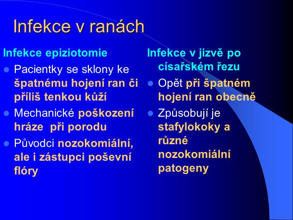 Infekce v ranách Infekce epiziotomie Pacientky se sklony ke špatnému hojení ran či příliš tenkou kůží Mechanické poškození hráze při porodu Původci no