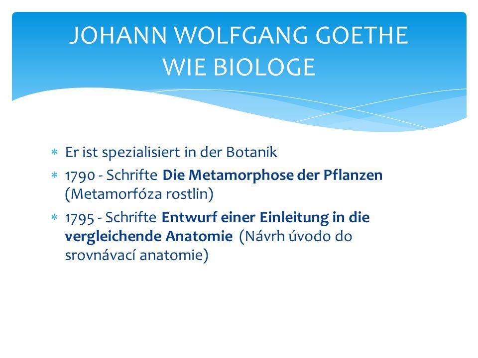  Er ist spezialisiert in der Botanik  1790 - Schrifte Die Metamorphose der Pflanzen (Metamorfóza rostlin)  1795 - Schrifte Entwurf einer Einleitung in die vergleichende Anatomie (Návrh úvodo do srovnávací anatomie) JOHANN WOLFGANG GOETHE WIE BIOLOGE
