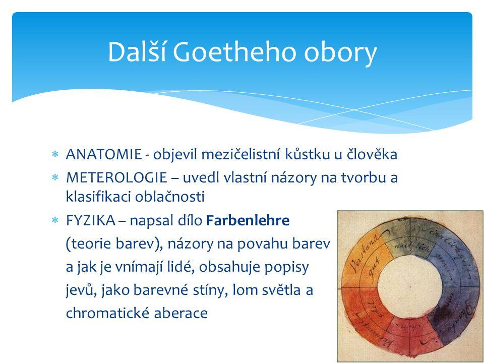  ANATOMIE - objevil mezičelistní kůstku u člověka  METEROLOGIE – uvedl vlastní názory na tvorbu a klasifikaci oblačnosti  FYZIKA – napsal dílo Farbenlehre (teorie barev), názory na povahu barev a jak je vnímají lidé, obsahuje popisy jevů, jako barevné stíny, lom světla a chromatické aberace Další Goetheho obory