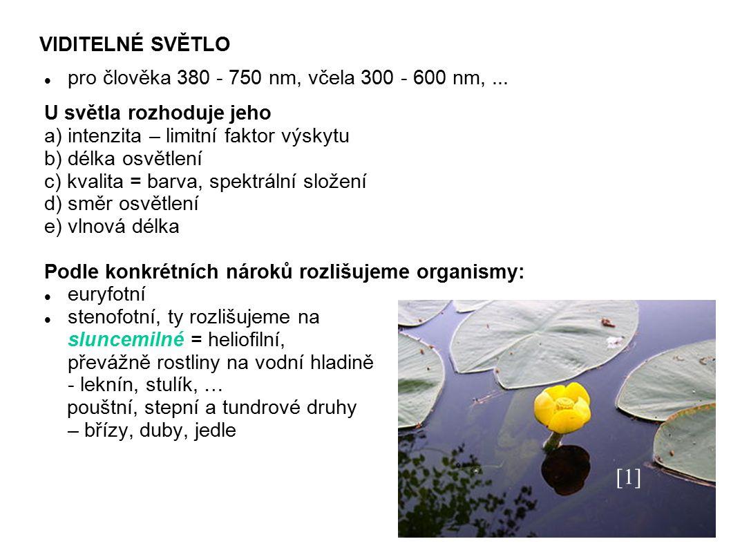 VIDITELNÉ SVĚTLO pro člověka 380 - 750 nm, včela 300 - 600 nm,...