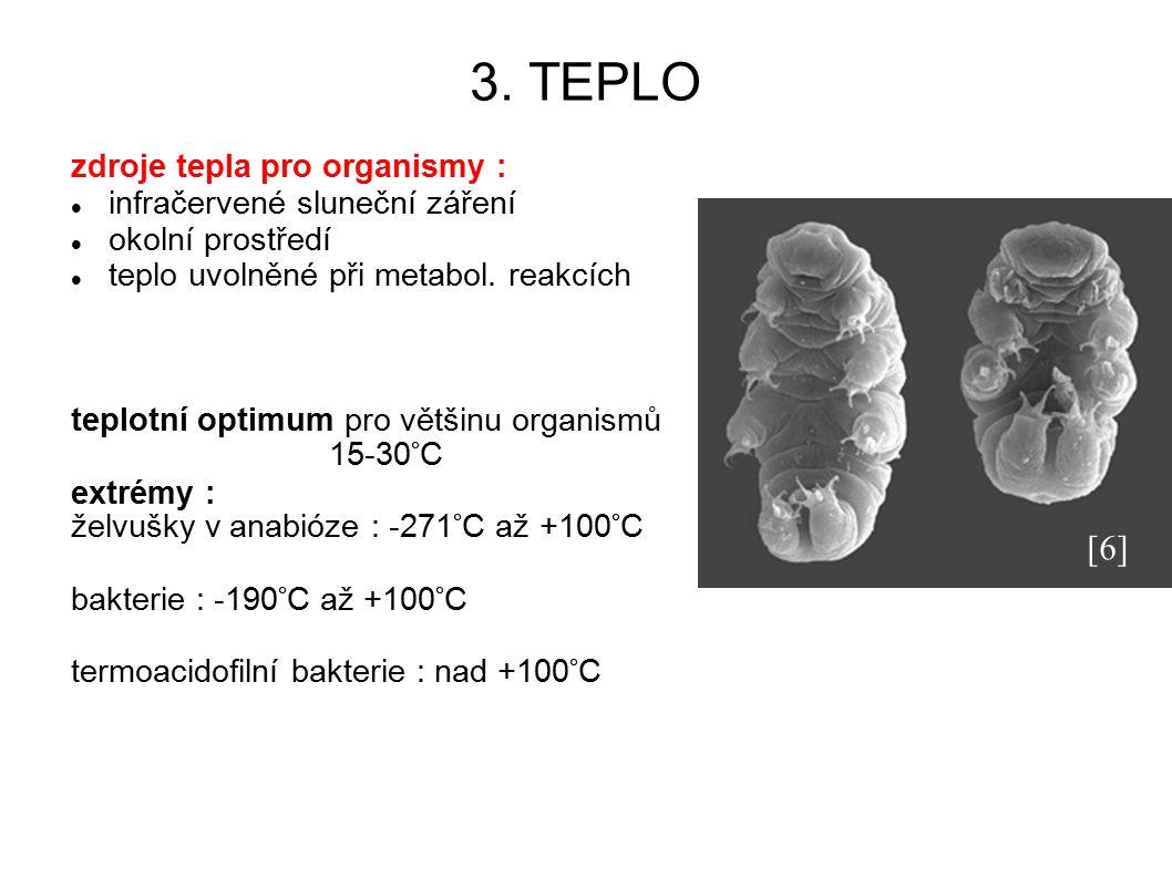 3. TEPLO zdroje tepla pro organismy : infračervené sluneční záření okolní prostředí teplo uvolněné při metabol. reakcích teplotní optimum pro většinu