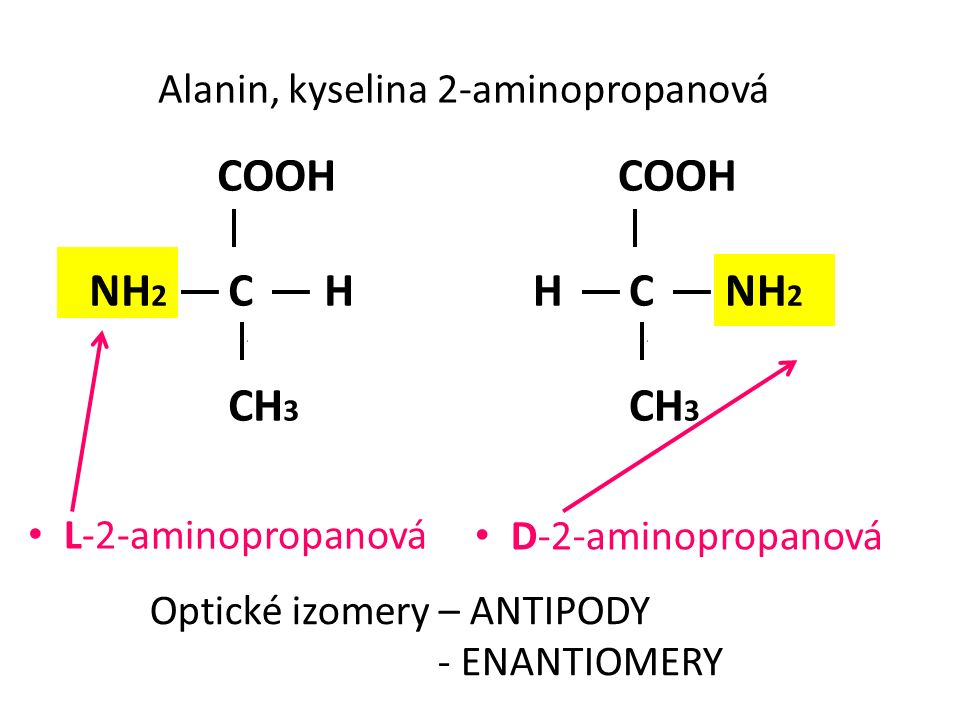 COOH NH 2 C H CH 3 COOH H C NH 2 CH 3 Alanin, kyselina 2-aminopropanová L-2-aminopropanová D-2-aminopropanová Optické izomery – ANTIPODY - ENANTIOMERY