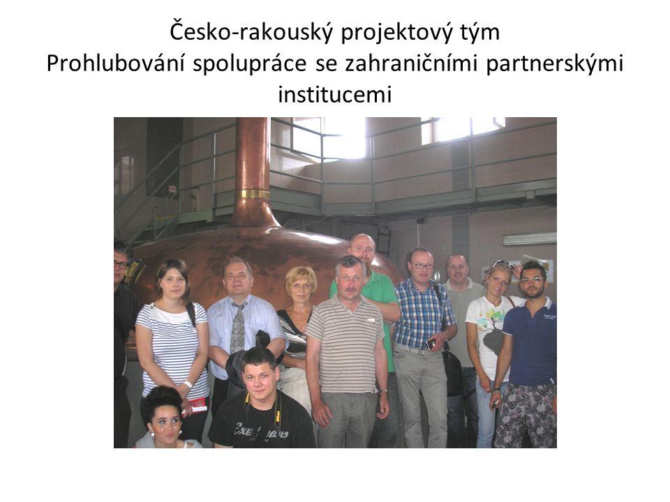 Česko-rakouský projektový tým Prohlubování spolupráce se zahraničními partnerskými institucemi