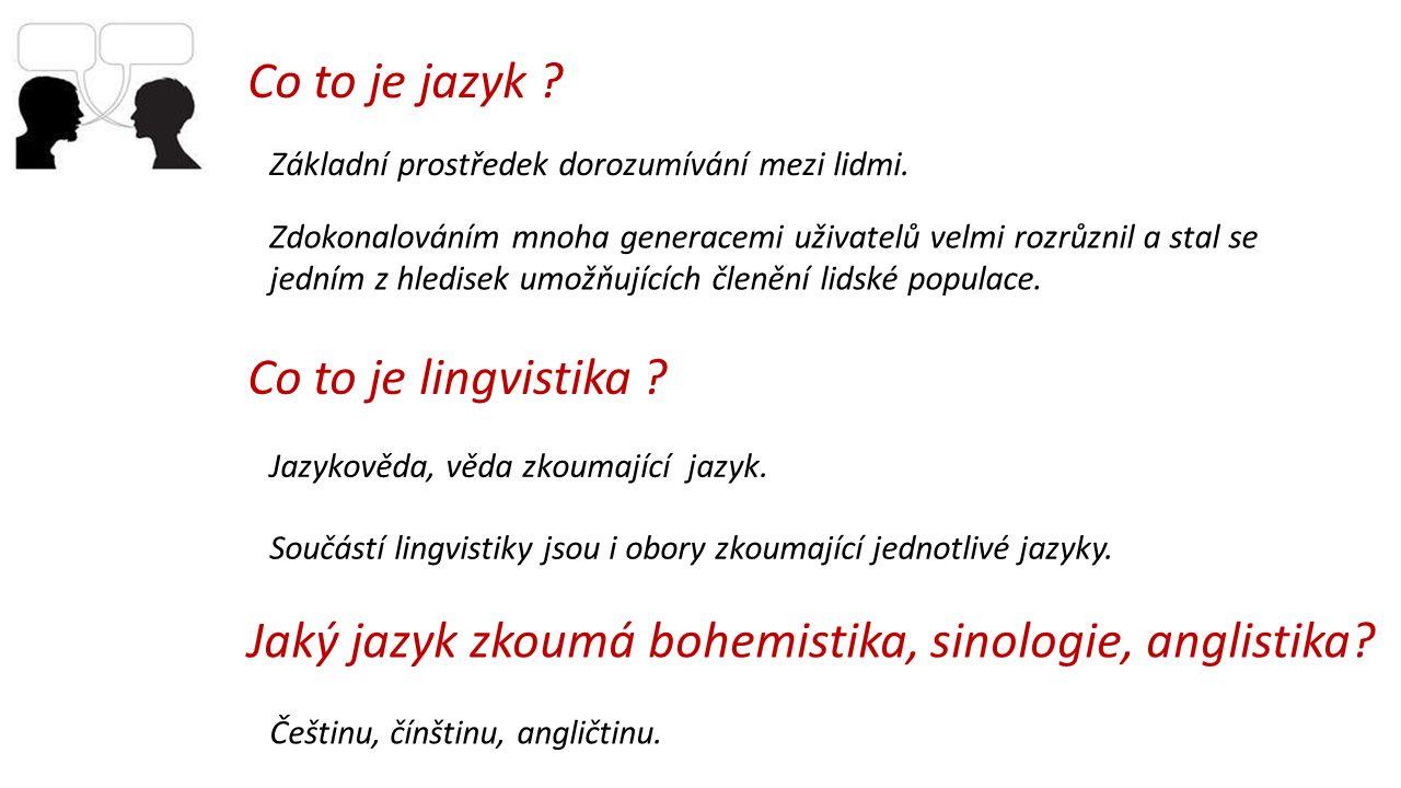 Základní prostředek dorozumívání mezi lidmi. Co to je jazyk ? Zdokonalováním mnoha generacemi uživatelů velmi rozrůznil a stal se jedním z hledisek um