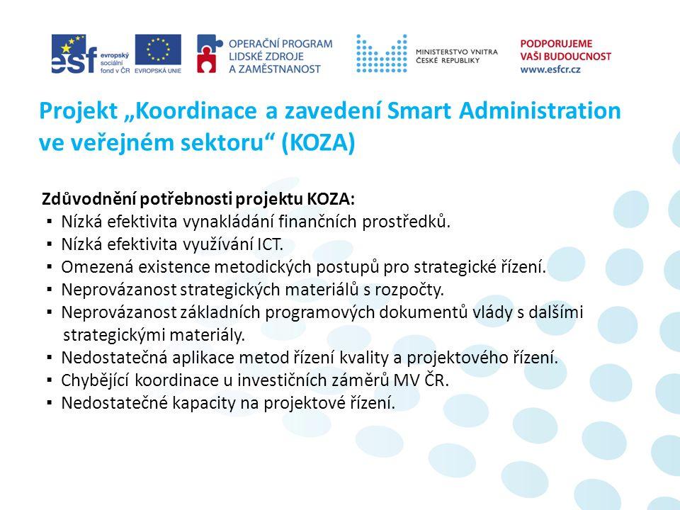 ▪ eGovernment – elektronizace veřejné správy (zefektivnění veřejné správy tak, aby její výkon byl rychlejší, levnější a k cílovému uživateli vlídnější).