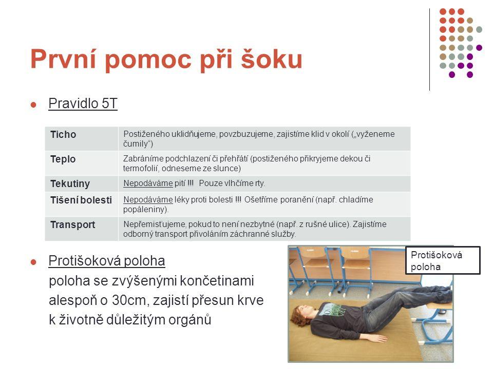 Zdroje KAUFMAN, Jan.Záchranář. Vodní záchranná služba Českého červeného kříže, 2007.