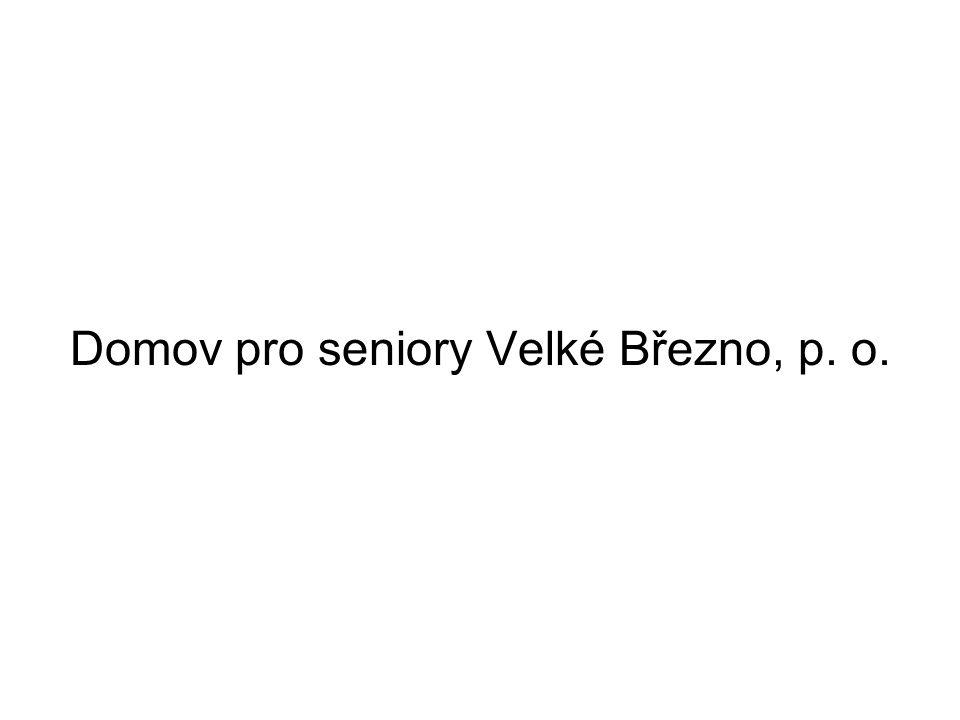 Základní údaje Příspěvková organizace Zřizovatelem je Magistrát města Ústí nad Labem Velké Březno je menší obec vzdálená 10 km od Ústí nad Labem –Výhody: klid, krásné prostředí, okolní příroda –Nevýhody: obtížná dostupnost pro návštěvy i zaměstnance, dále pro studenty, praktikanty a dobrovolníky, malá návaznost na další služby