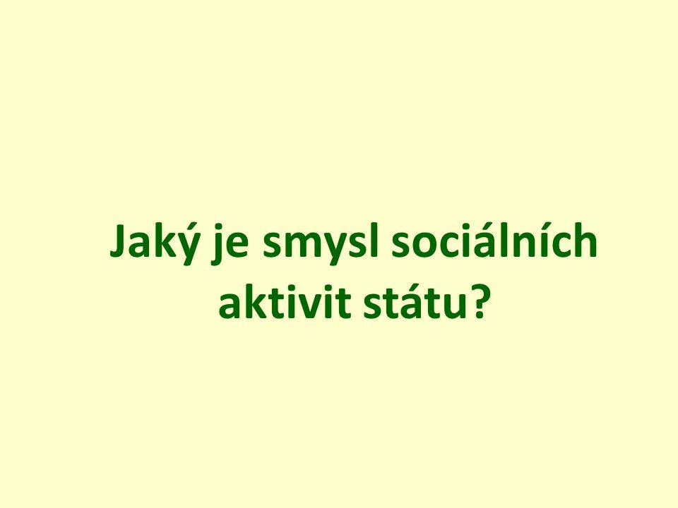 Jaký je smysl sociálních aktivit státu?
