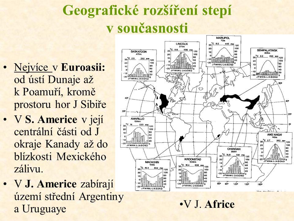 Geografické rozšíření stepí v současnosti Nejvíce v Euroasii: od ústí Dunaje až k Poamuří, kromě prostoru hor J Sibiře V S.