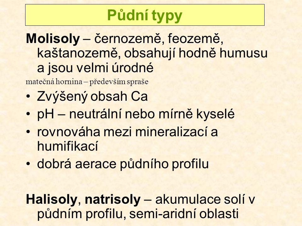 Molisoly – černozemě, feozemě, kaštanozemě, obsahují hodně humusu a jsou velmi úrodné matečná hornina – především spraše Zvýšený obsah Ca pH – neutrální nebo mírně kyselé rovnováha mezi mineralizací a humifikací dobrá aerace půdního profilu Halisoly, natrisoly – akumulace solí v půdním profilu, semi-aridní oblasti Půdní typy