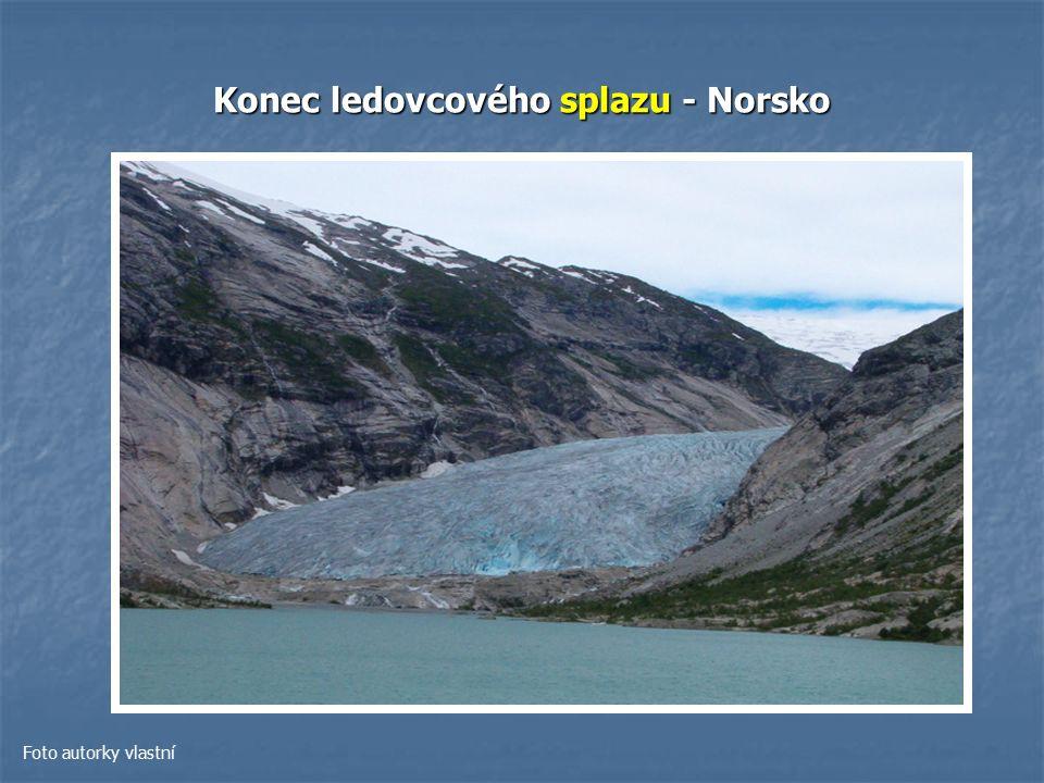 Konec ledovcového splazu - Norsko Foto autorky vlastní