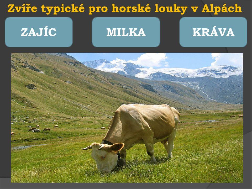 Hory a lidé I v těžkých vysokohorských podmínkách žijí trvale lidé.