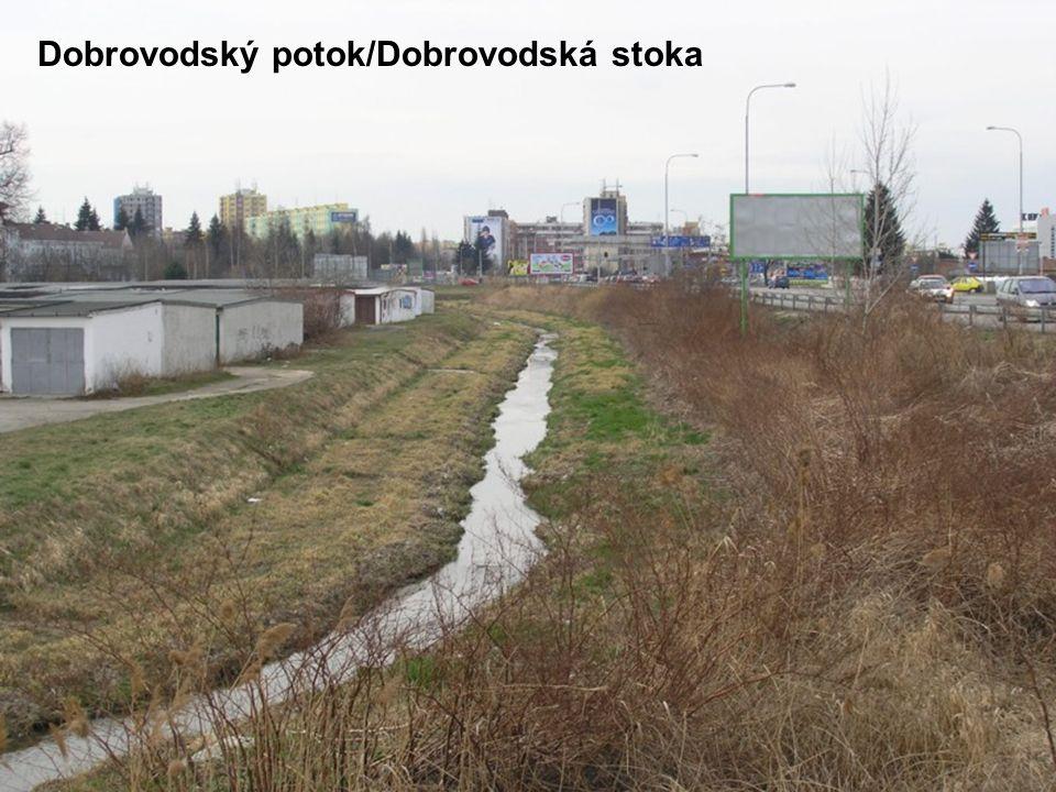 Dobrovodský potok/Dobrovodská stoka