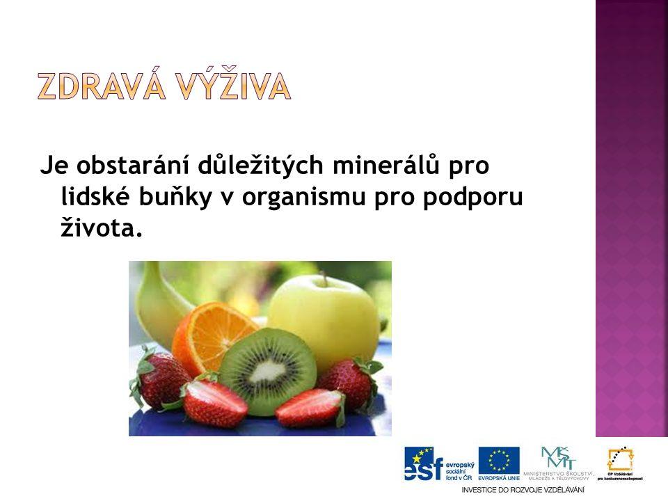 Je obstarání důležitých minerálů pro lidské buňky v organismu pro podporu života.