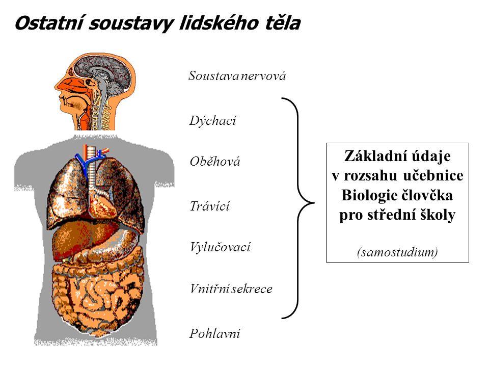 Ostatní soustavy lidského těla Soustava nervová Dýchací Oběhová Trávící Vylučovací Vnitřní sekrece Pohlavní Základní údaje v rozsahu učebnice Biologie člověka pro střední školy (samostudium)