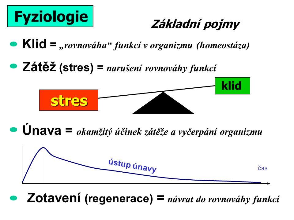 """Klid = """"rovnováha funkcí v organizmu (homeostáza) Fyziologie stres klid Zátěž (stres) = narušení rovnováhy funkcí Zotavení (regenerace) = návrat do rovnováhy funkcí Únava = okamžitý účinek zátěže a vyčerpání organizmu čas ústup únavy Základní pojmy"""
