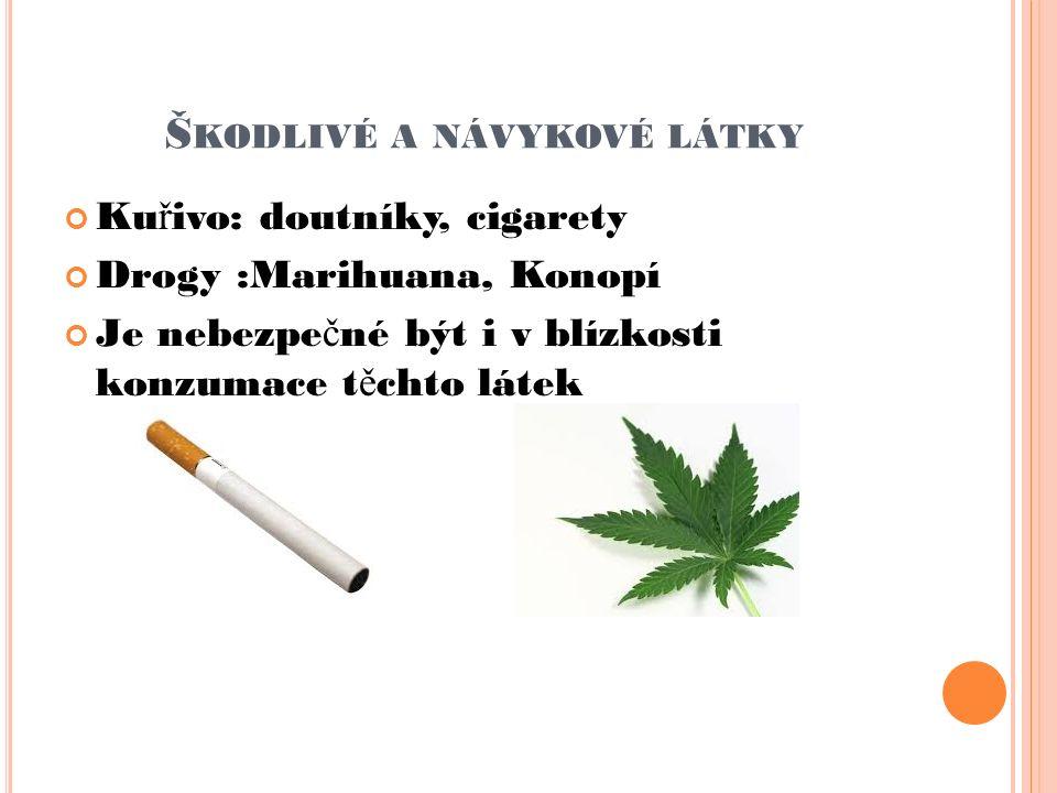 Š KODLIVÉ A NÁVYKOVÉ LÁTKY Ku ř ivo: doutníky, cigarety Drogy :Marihuana, Konopí Je nebezpe č né být i v blízkosti konzumace t ě chto látek