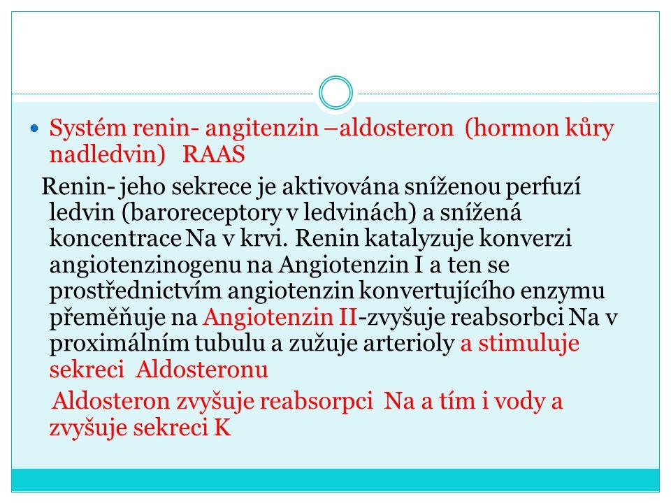 Systém renin- angitenzin –aldosteron (hormon kůry nadledvin) RAAS Renin- jeho sekrece je aktivována sníženou perfuzí ledvin (baroreceptory v ledvinách) a snížená koncentrace Na v krvi.