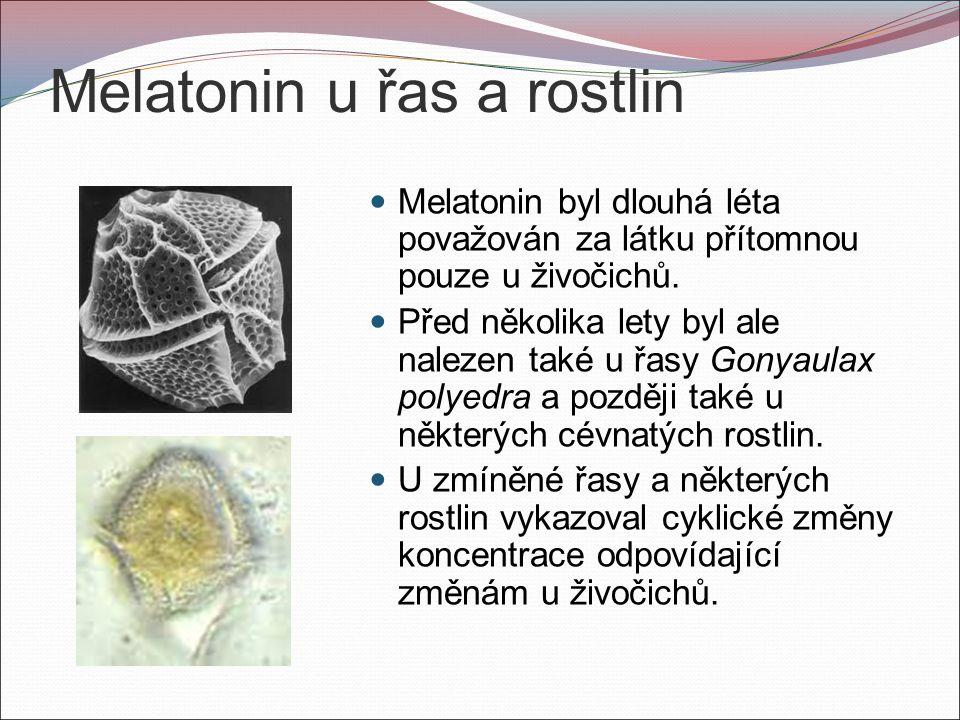 Melatonin u řas a rostlin Melatonin byl dlouhá léta považován za látku přítomnou pouze u živočichů.