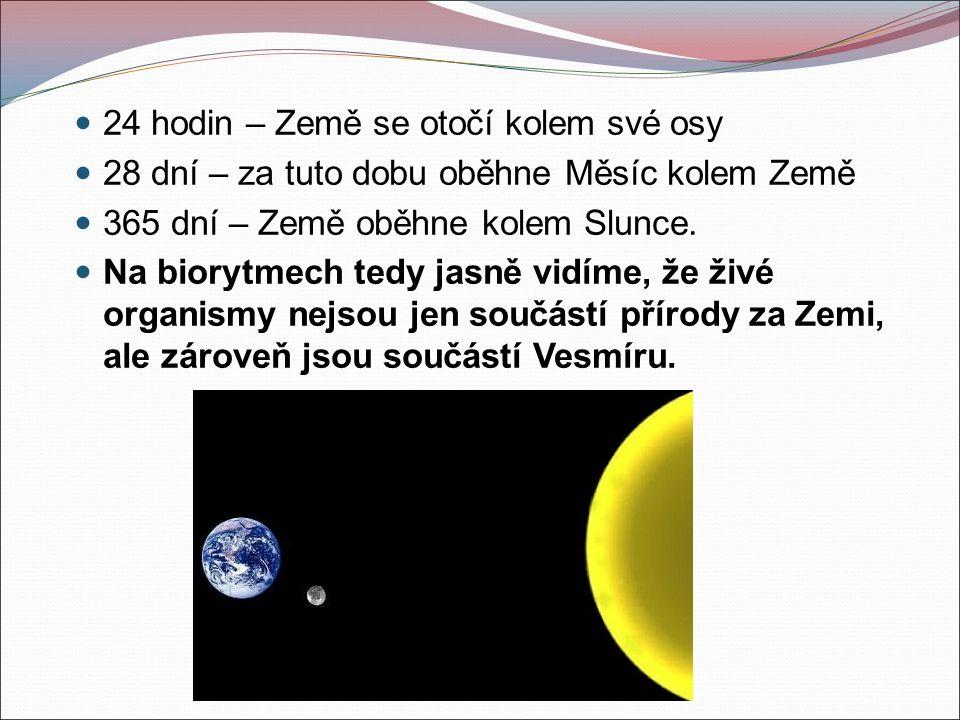 24 hodin – Země se otočí kolem své osy 28 dní – za tuto dobu oběhne Měsíc kolem Země 365 dní – Země oběhne kolem Slunce.