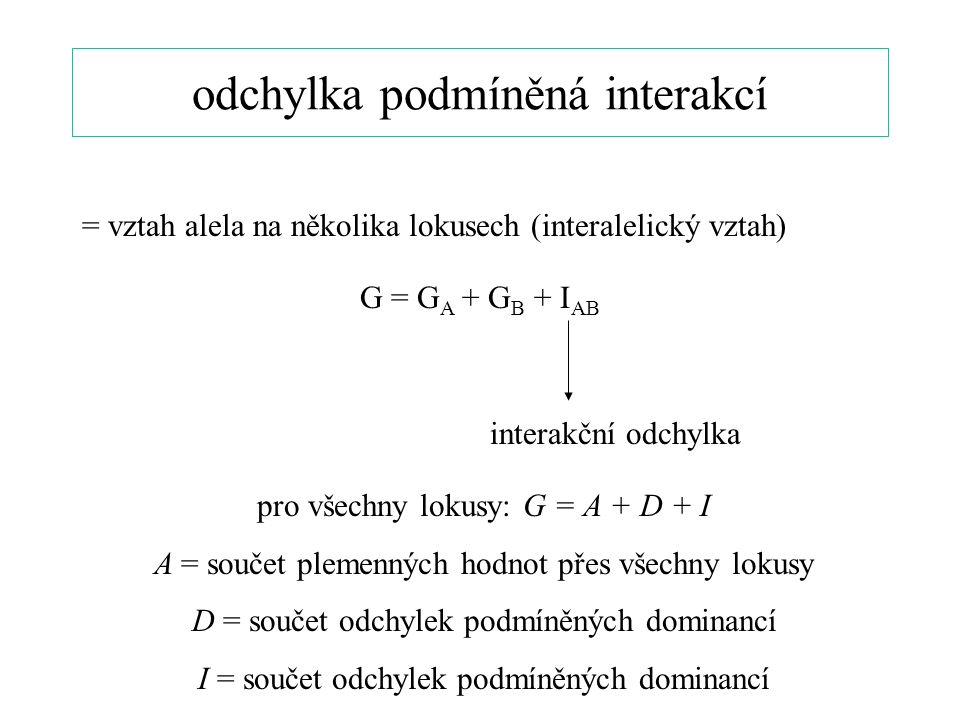 odchylka podmíněná interakcí = vztah alela na několika lokusech (interalelický vztah) G = G A + G B + I AB interakční odchylka pro všechny lokusy: G = A + D + I A = součet plemenných hodnot přes všechny lokusy D = součet odchylek podmíněných dominancí I = součet odchylek podmíněných dominancí