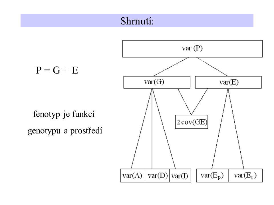 Shrnutí: P = G + E fenotyp je funkcí genotypu a prostředí