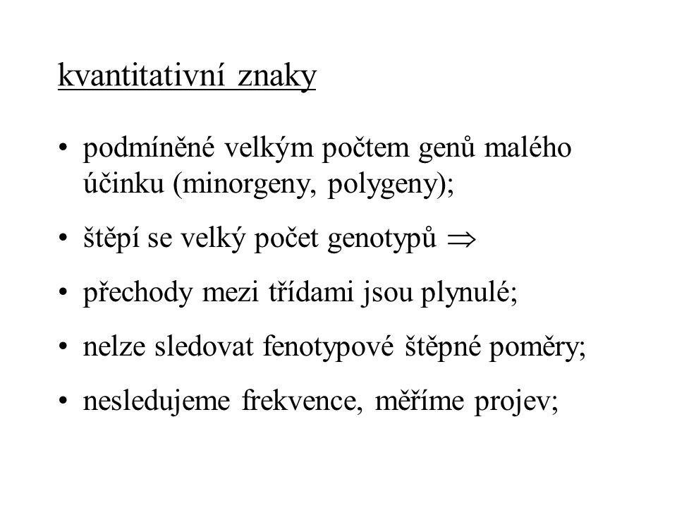 Hodnoty a průměry Fenotypová hodnota = pozorovatelná měřitelná hodnota znaku rozklad na složky podle původu: genotyp = sestava genů u jedince prostředí = negenetické okolnosti P = G + E genotypová hodnota + prostřeďová odchylka Σ odchylek v populaci = 0