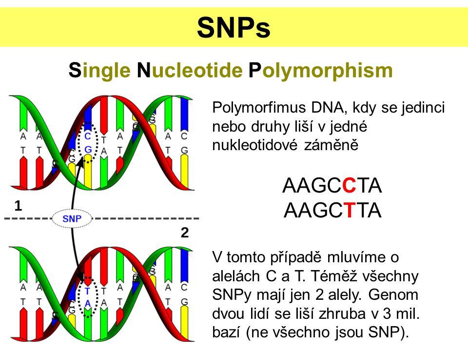 ODHAD GENETICKÉ VZDÁLENOSTI