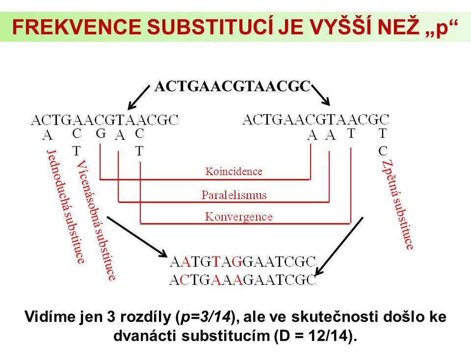 """FREKVENCE SUBSTITUCÍ JE VYŠŠÍ NEŽ """"p K = 12, p = 3 Jednoduchá substituce Vícenásobná substituce Zpětná substituce CTCT TCTC GTCTCT Koincidence ACTGAACGTAACGC Vidíme jen 3 rozdíly (p=3/14), ale ve skutečnosti došlo ke dvanácti substitucím (D = 12/14)."""