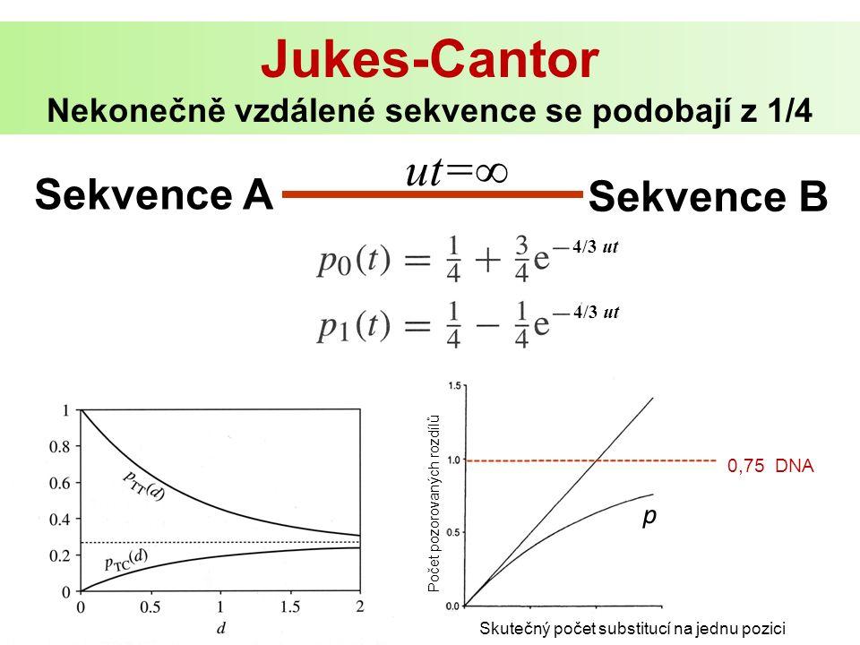 Jukes-Cantor Nekonečně vzdálené sekvence se podobají z 1/4 Skutečný počet substitucí na jednu pozici Počet pozorovaných rozdílů 0,75 DNA p Sekvence A Sekvence B ut=∞ 4/3 ut