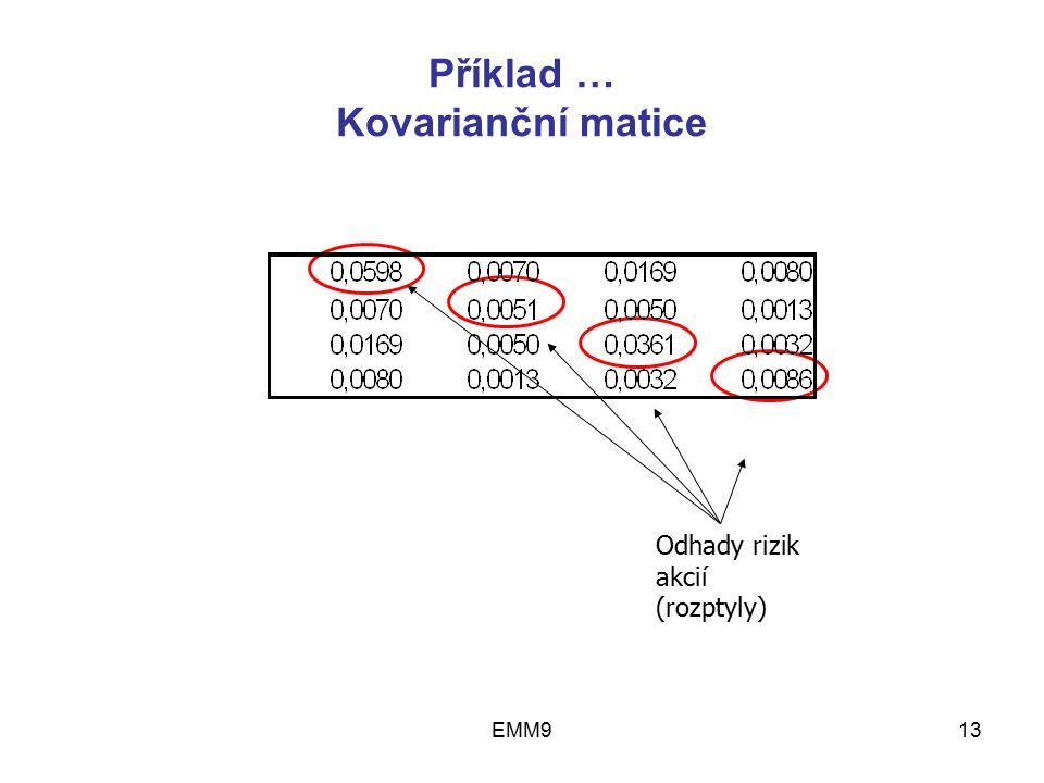 EMM913 Příklad … Kovarianční matice Odhady rizik akcií (rozptyly)