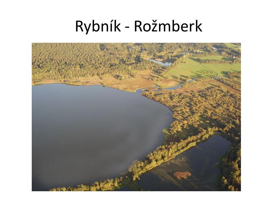 Rybník - Rožmberk